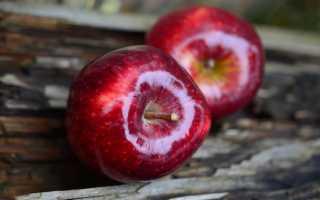 Сколько калорий в яблоке красном
