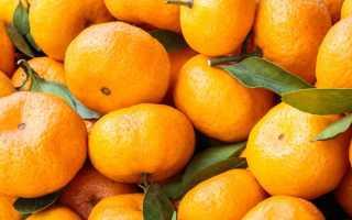 Можно ли на диете есть мандарины