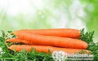 Калории в моркови свежей