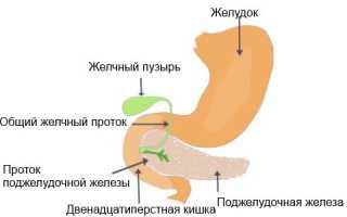 Диета при панкреатите и гастрите