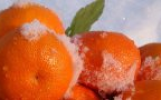 Печень трески калорийность