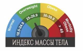 Как измерить индекс массы тела