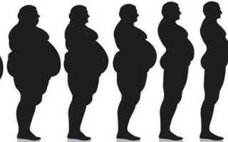 На сколько можно худеть в месяц