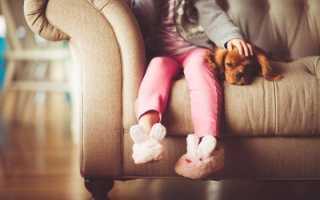 Ребенок просит купить ему домашнее животное: советы родителям