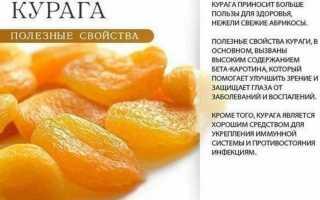 Калорийность кураги 100 грамм